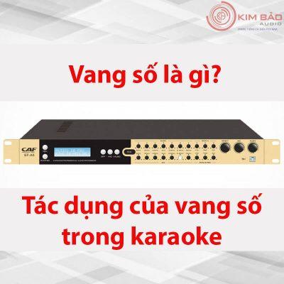 Tác dụng vang số trong dàn karaoke